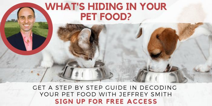 IRT pet food freemium