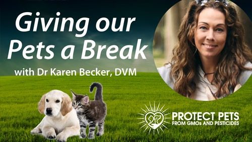 Dr.Karen Becker on giving our pets a break