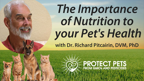 The Importance of Nutrition to your Pet's Health with Dr. Richard Pitcairin, DVM, PhD